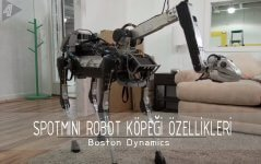 boston dynamics spotmini robot köpeği